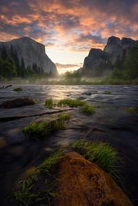A misty morning along the valley floor - Yosemite, California