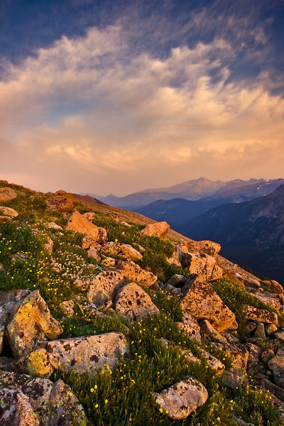 The Rockies - Varina Patel