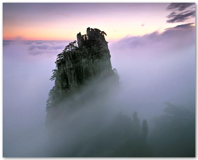 Morning Veil