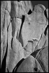 Granite Walls and Shadows