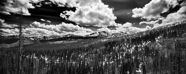 Harts Pass panorama
