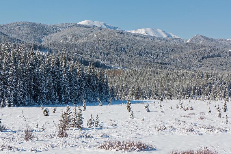 Moose Mountain above the Moose Loop meadows.