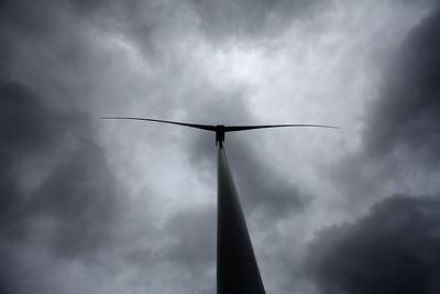Mountlucas Wind Farm, Offaly, Ireland.  Picture© Niall O'Mara 13th June 2018  - niallomara@me.com