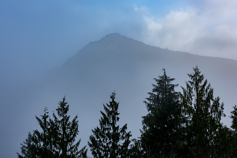 Mountain Fog near Port Angeles, WA