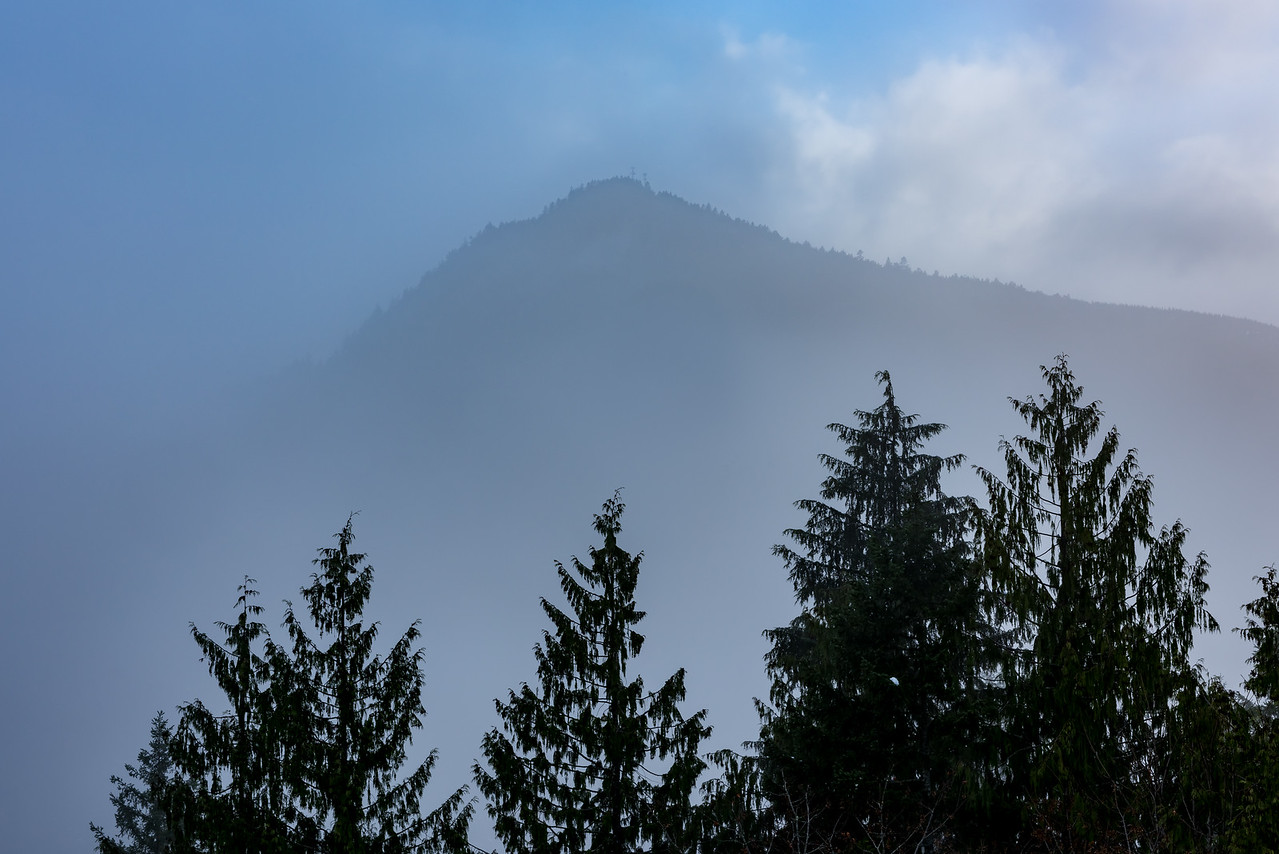Mountain Fog near Port Angeles, WA