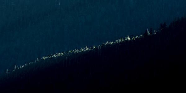 Ridgeline highlights near Obstruction Point, Olympioc National Park, Washington