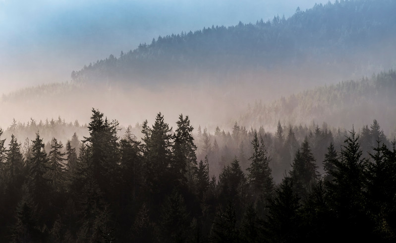 Foggy ridgelines near Joyce, Washington