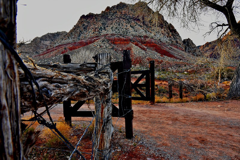 Near Las Vegas, Nevada.  The gnarled old wood and barbed wire,  with the colorful hill in the back ground, drew me in.