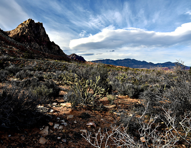 The Desert Landscapes of Nevada