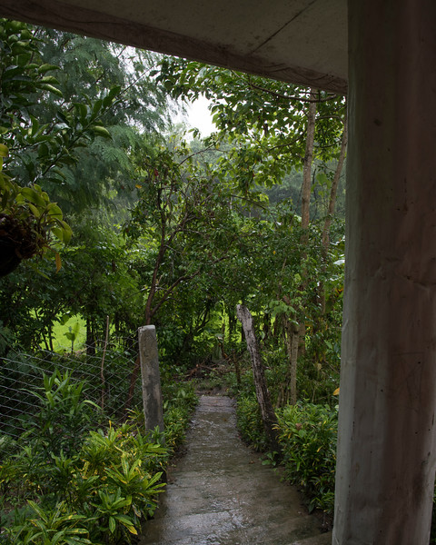 Steep path leading back down to the rice fields