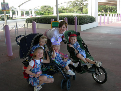 disney 2008 satori photo group