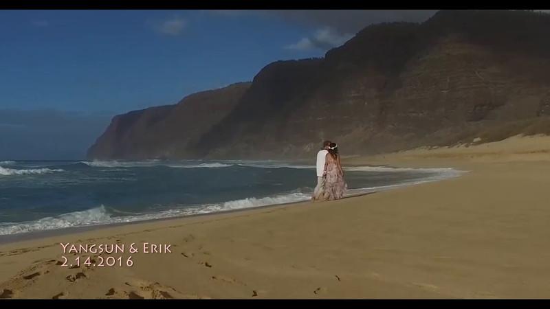 Hawaii Wedding & Portraiture 2016