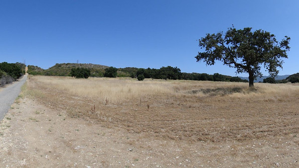 Ventura Farms