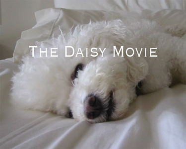 The Daisy Movie