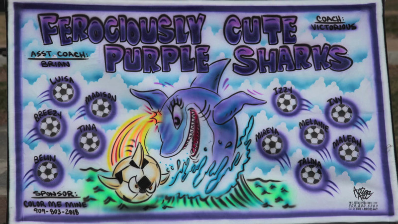 AYSO Purple Sharks G U-12 2013