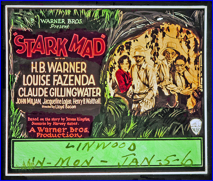 """Stark Mad (1929) <br /> <br /> Synopsis: """"James Rutherford has organized an expedition to the jungles of Central America to find his missing son, Bob, and his guide, Simpson. Professor Dangerfield intercepts the party, bringing with him Simpson, whose jungle experience has made him a raving maniac. They go ashore and decide to spend a night at a Mayan temple. After Irene, Bob's fiancée, disappears, they come across a gigantic ape chained to the floor, and Captain Rhodes, commander of the yacht, is abducted by a strange monster with great hairy talons. Messages are found warning the party to leave. Sewald, an explorer, is mysteriously killed by an arrow. Simpson's reason returns, and he saves the party, revealing that the demented hermit, whom he has just killed, and who formerly occupied the ruins, murdered Bob two months before."""" -  <a href=""""http://www.tcm.com/tcmdb/title.jsp?stid=91314"""">http://www.tcm.com/tcmdb/title.jsp?stid=91314</a>"""