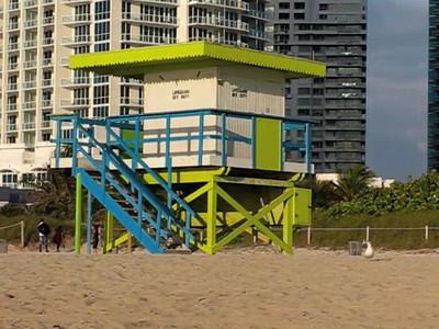 Miami Trip
