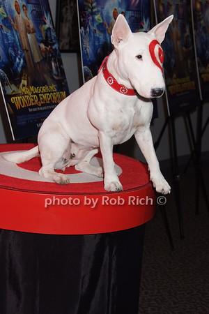 Bullseye photo by Rob Rich © 2007 516-676-3939 robwayne1@aol.com
