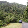 A view in Kaitoke Regional Park, a location used for in scenes of Rivendell.