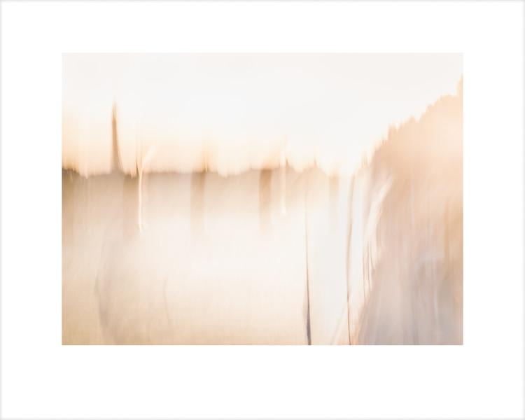 The Seine 1