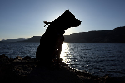 Spirit at Blue Mesa lake, CO