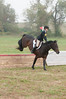 2013 Cheshire Hunter Trials - 0007