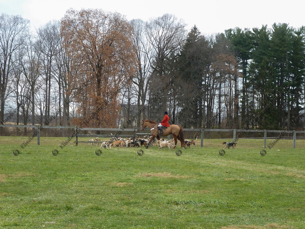 00360 - 2012-11-22- Hunt -  Plumsted Farm - 024