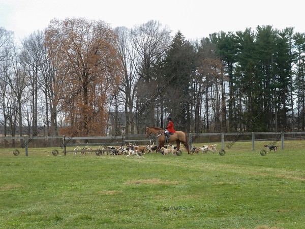 00359 - 2012-11-22- Hunt -  Plumsted Farm - 023