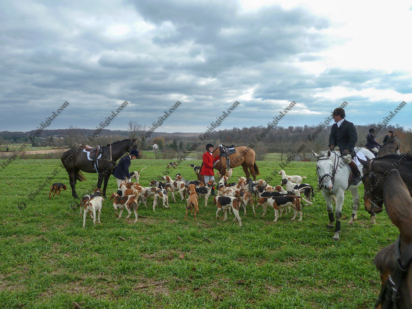 00342 - 2012-11-22- Hunt -  Plumsted Farm - 006