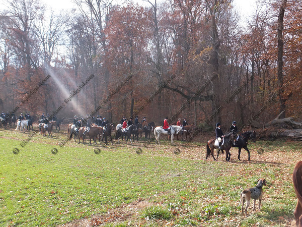 0180 - 2013-11-16 - Hunt - Doe Run Village