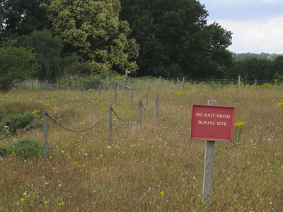 T he English love to state the obvious.  Sutton Hoo.