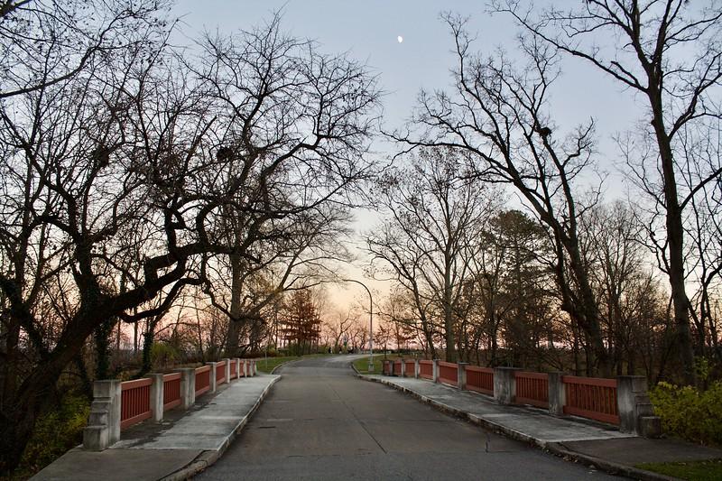 Eden Park Melan Arch Bridge