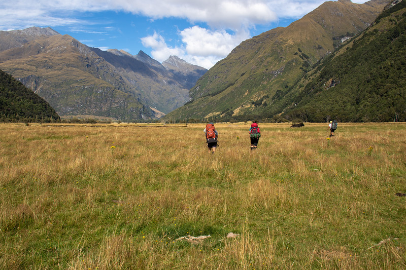 Cameron Flat, East Matukituki Valley