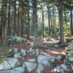 Mount Belknap 15