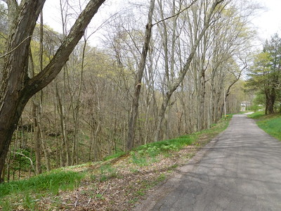 Coon Hollow Road - Spring