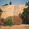 Mt. Diablo, Walnut Creek, California
