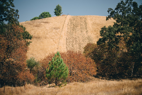 Mt. Diablo, Walnut Creek, California