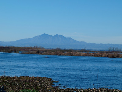 Mt Diablo from Delta