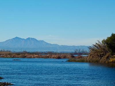 Delta View of Mt Diablo
