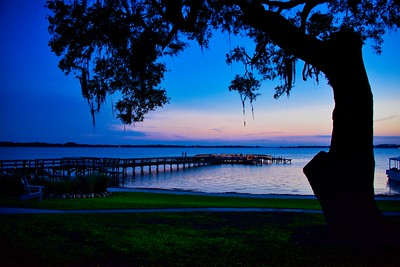Lake Dora In Blue