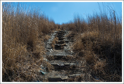 The path up the mountain.