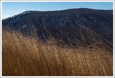 I liked the texture in the distant mountain and the grass.