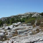 Mt Grand Monadnock