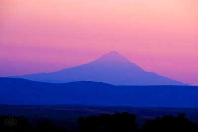 Mt Hood in twilight's pink glow