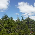 Mt Kearsarge 49
