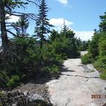 Mt Kearsarge 18