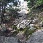 Mt Kearsarge 56