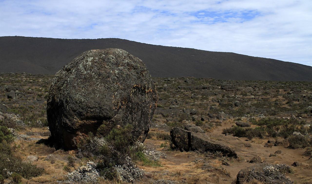 Oddly shaped rocks