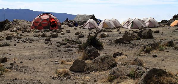 Reaching Shira II camp (3,850 m)