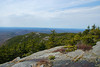 The view Southwest over Bald Rock from Thoreau's 1860 camp site